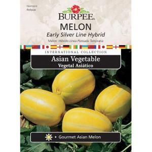 Burpee Asian Melon Early Silver Line Hybrid Seed 69636