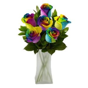 The Ultimate Bouquet Gorgeous Rainbow Rose Bouquet in Frosted Vase (6 Stem), Overnight Shipping Included RB346