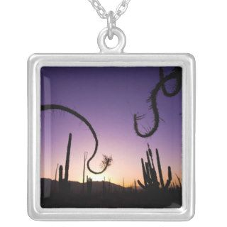 Boojum trees, Valle De Los Cirios Flora And Fauna Pendants