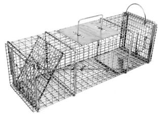 Tomahawk Professional Series Rigid Trap with Easy Release Door for Skunks/Possums/Prairie Dogs   Wildlife & Rodent Control