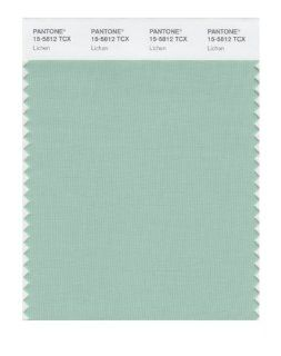 PANTONE SMART 15 5812X Color Swatch Card, Lichen   Wall Decor Stickers