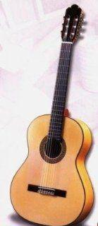 Antonio Sanchez 1018 Flamenco Spanish Classical Guitar Musical Instruments