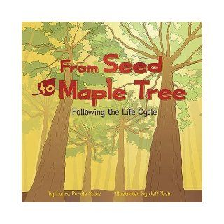 From Seed to Maple Tree Following the Life Cycle (Amazing Science) by Salas, Laura Purdie (9/1/2008) Books