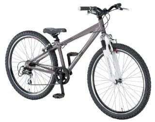 Rex Uni Alu Dirtbike REX, dirt grey, Rahmenh�he: 33 cm, Reifengr��e: 26 Zoll (66 cm), 1174: Sport & Freizeit