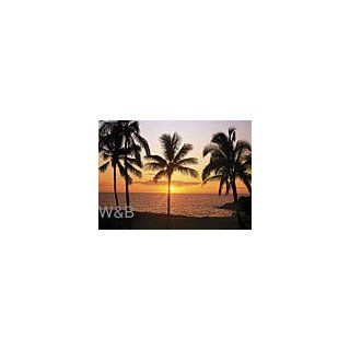Fototapete Hawaii Sonnenuntergang Strand Hochwertiges Spezial Foto Tapetenpapier (115 g/m� Bogenformat: ca. 92 x 127 cm) Gesamtformat: ca. 368 x 254 cm 8 teilig: Baumarkt