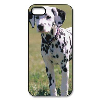 Dalmatian Puppy Dog Wallpaper iPhone 5 Case Back Case for iphone 5: Cell Phones & Accessories