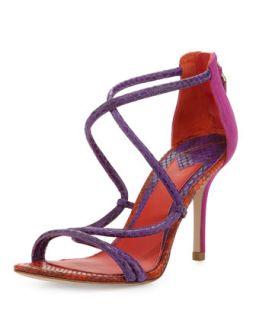 Estefania Tricolor Snake Sandal   B Brian Atwood   Purple (37.5B/7.5B)