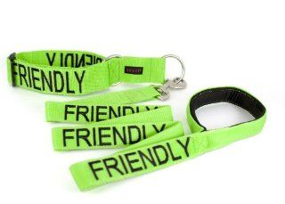 """FRIENDLY"" Color Coded Green Semi Choke Dog Collar & 4 Foot Leash Set (Known As Friendly) PREVENTS Accidents By Warning Others of Your Dog in Advance! : Pet Collars : Pet Supplies"