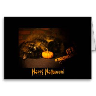 Cute Cat With Pumpkin   Happy Halloween Greeting Cards