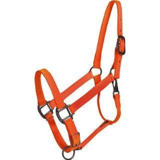 Blaze Orange Horse Halter   USA Made : Sports & Outdoors
