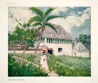 1906 Color Print House Near Bog Walk Jamaica Indigenous People Landscape Black   Original Color Print   Landscape Posters Jamaica
