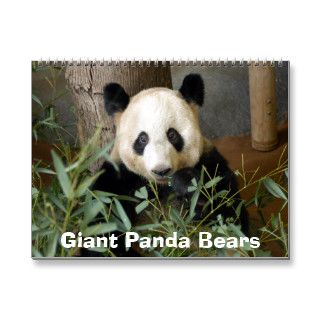 panda117, Giant Panda Bears Wall Calendars