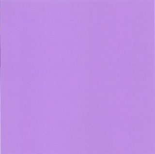 Cre8 a Page 8x8 Grape/Light Purple Cardstock, 25 Sheets, Card Stock, Scrapbooking  Cardstock Papers