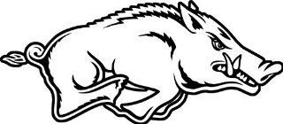 "University of Arkansas Razorbacks Bumper Sticker hog 5"" x 3"": Everything Else"