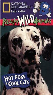 National Geographic's Really Wild Animals: Hot Dogs and Cool Cats [VHS]: Really Wild Animals: Movies & TV