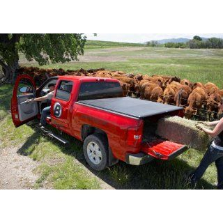 Bestop 15235 01 ZipRail Truck Tonneau Cover for Dodge Ram 1500, 8' Bed w/o tailgate spoiler, 2002 2008; Dodge Ram 2500/3500, 8' Bed, w/o tailgate spoiler, 2003 2009: Automotive