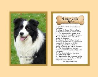 Dog Rules Border Collie Wall Decor Pet Saying Dog Saying   Decorative Plaques