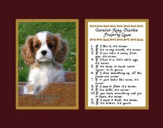 Cavalier King Charles Property Laws Wall Decor Pet Saying Dog Saying Cavalier King Charles Saying   Decorative Plaques