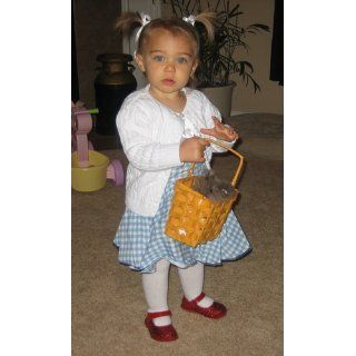 Infant 24 Months Fancy Infant Dorothy Costume Dress: Clothing
