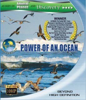 Equator 1: Power Of An Ocean (As seen on Discover HD & Animal Planet) [Blu ray]: Equator 1 Power of An Ocean, Peter Hayden, Shinichi Murata: Movies & TV