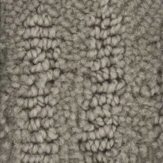 STAINMASTER PetProtect Belle Lady Berber Indoor Carpet