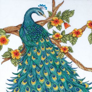 Peacock Counted Cross Stitch Kit 14inX14in 14 Count   16426902