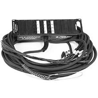 Peavey 100 12 Pair Audio Link Cable with XLR Returns 00366850