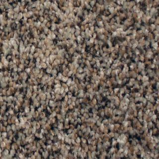 STAINMASTER Essentials Channing Island Trail Textured Indoor Carpet