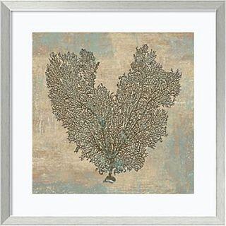 Amanti Art Aqua Fan Coral Framed Art Print by Caroline Kelly, 26.88H x 26.88W