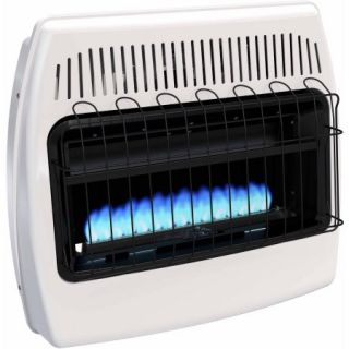Dyna Glo BF30NMDG 30,000 BTU Blue Flame Natural Gas Vent Free Wall Heater