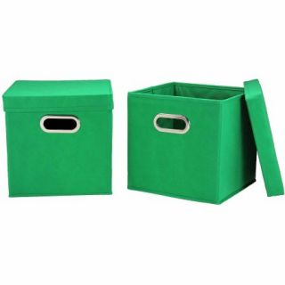 Household Essentials Storage Cubes with Lids, 2pk, Small, Kelly Green