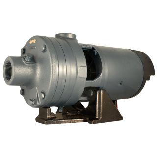 STAR Water Systems 1 HP Cast Iron Lawn Pump
