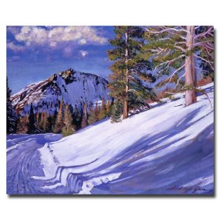 David Lloyd Glover Snow Mountain Road Canvas Art   14974342