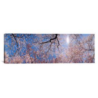 iCanvas Panoramic Washington D.C. Photographic Print on Canvas